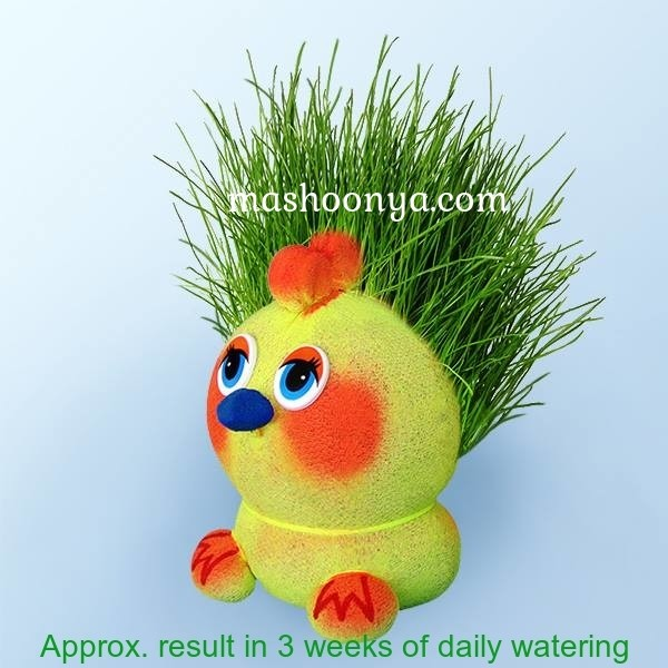 "Grass Head ""Chick"" with Grass"