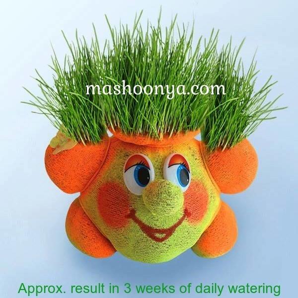 """Grass Head """"Sun"""" with Grass"""