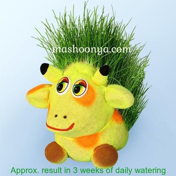 """Grass Head """"Giraffe"""" with Grass"""