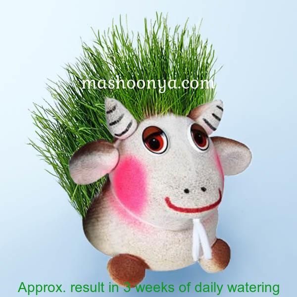 "Grass Head ""Goat"" with Grass"