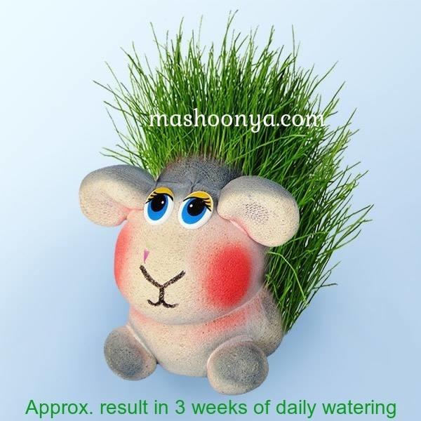 "Grass Head ""Lamb"" with Grass"