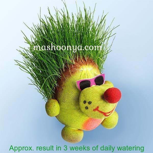"""Grass Head """"Mole"""" with Grass"""