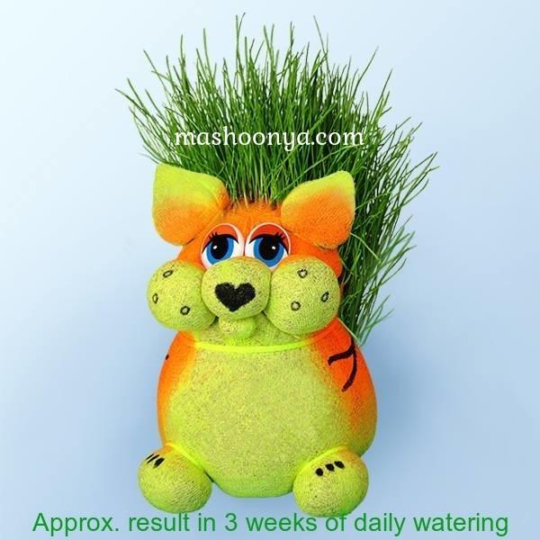 "Grass Head ""Tiger"" with Grass"