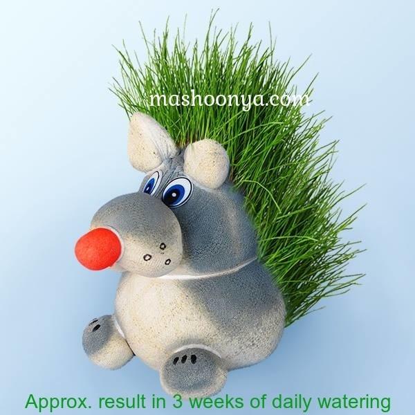 "Grass Head ""Wolf"" with Grass"